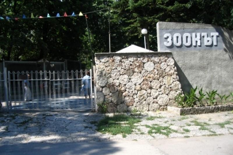 Osvremenyavat Varnenskiya Zoopark Ss Zaem Ot Fonda Za Gradsko